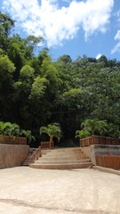Stairs to the Forest, Caribbean