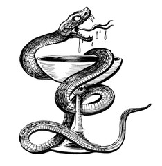 Snake and cup