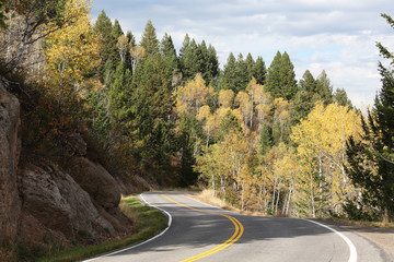 Wall Mural - Winding Mountain Road with Fall Colors