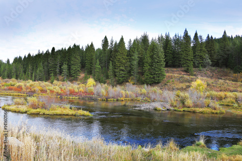 Wall mural Peaceful River Forest Missouri River