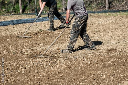 Farmers raking freshly rotovated or tilled soil stock for The soil 02joy