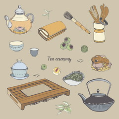 Set tea ceremony with various traditional tools. Teapot, bowls, gaiwan. Colorful hand drawn illustration.