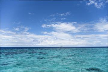 モルディブの海 遠浅 サンゴ礁
