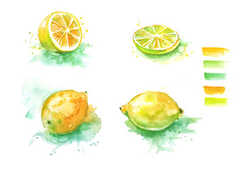 A set of watercolor drawings - a fruit lemon, a slice, a fruit, a slice of lime, citrus. On white isolated background.