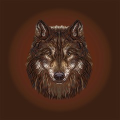 The majestic wolf, painted smooth lines, on a brown background