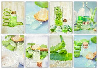 Aloe Vera extract in a small bottle and pieces on the table. Collage of many photos. Selective focus.