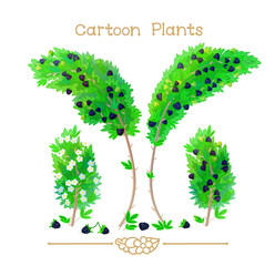Plantae series cartoon plants: blackberry