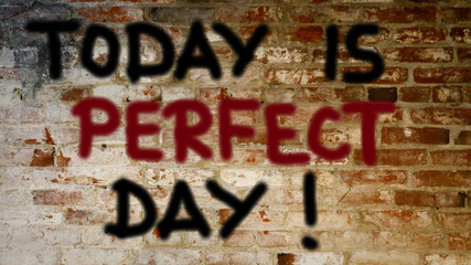 Today is perfect day Conce