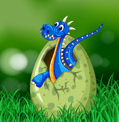 Blue dragon hatching egg on grass