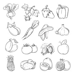 Doodles of vegetables and fruits, hand drawing vegan cooking food icons