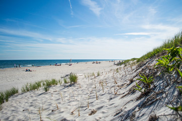Beach and Dunes – Summer in the Hamptons, USA