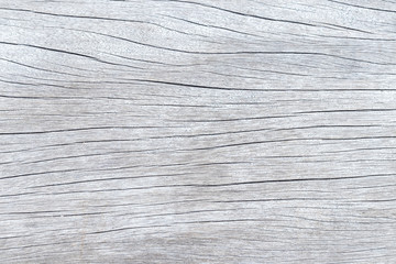 White wood texture, wooden background with empty space for text or image.