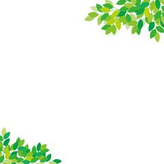新緑 フレーム