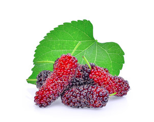 fresh mulberry with leaf isolated on white background