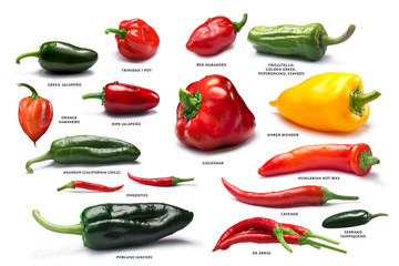 Canvas Prints Hot chili peppers Set of pepper fruits, paths