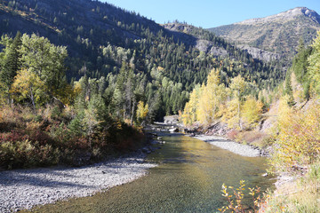Wall Mural - Mountain Stream with Fall Colors