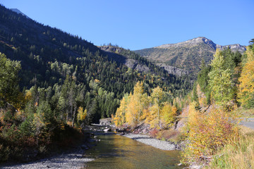 Wall Mural - Beautiful Mountain River in Glacier National Park with Fall Colors