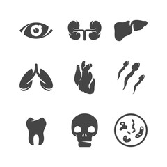 Modern icons set silhouettes of human organs