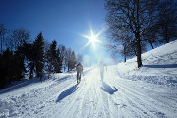 Ski alp on the mountains