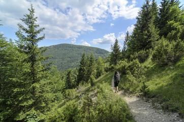 Woman tourist walking in wild nature