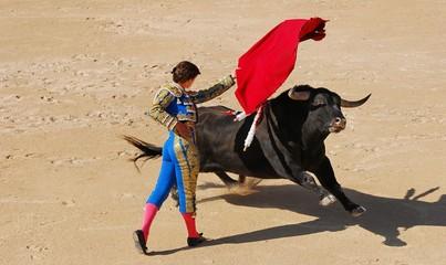 In de dag Stierenvechten corrida 1