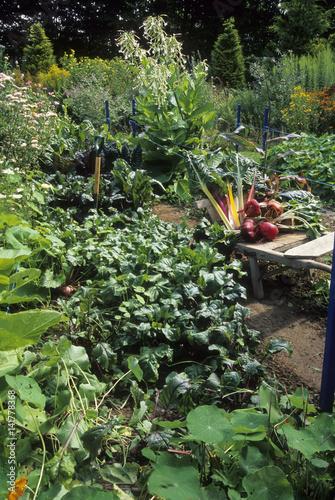 Jardin potager fleuri photo libre de droits sur la for Jardin fleuri lyon 9