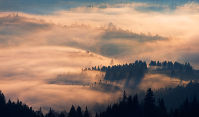 Morning fog in mountain village. Carpathians