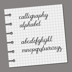 Calligraphy alphabet. Calligraphy, handwritten letters. Vector illustration.