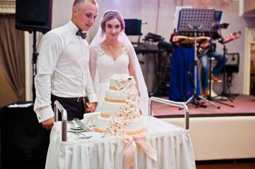 Marriage couple cut their wedding cake at dancefloor.