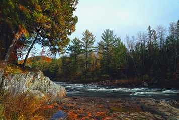Landscape with mountains trees and a river in front. Mountain river in fall forest with red yellow leafs and rocky shore.River in Quebec. Mountain river in autumn time. Stone iver, Riverside rocks