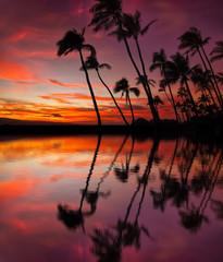 Wall Mural - Red hawaiian sunset