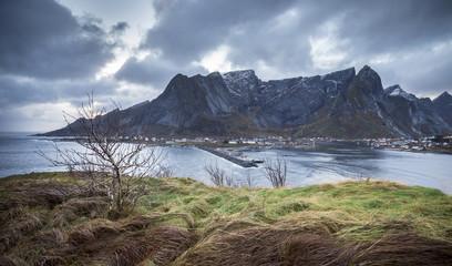 A view of Reine Bay during evening, Lofoten Islands, Northern Norway
