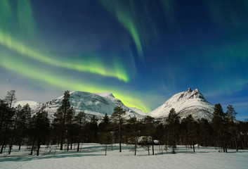 "The Northern Lights Lighting up  the ""The Corner Kick""  Lofoten Islands, Norway"