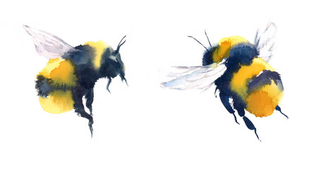 Watercolor Bumblebees In Flight Hand Painted Summer Illustration Set isolated on white background