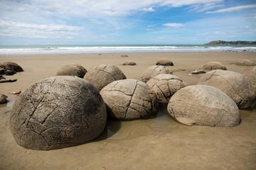 Wall Murals New Zealand Moeraki Boulders on the Koekohe beach, Eastern coast of New Zealand