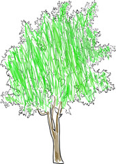 green colored tree sketch isolated on white