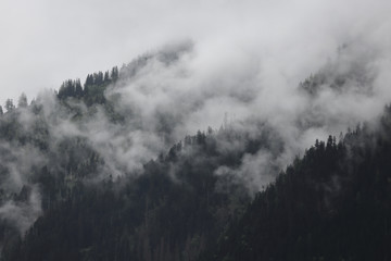 foggy clouds rising from dark alpine mountain forest Fototapete