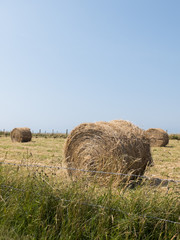 bale of hay on cultivated field, blue sky in the background