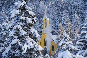 Trees with pristine snow and yellow church. St Moritz, Engadine, Switzerland