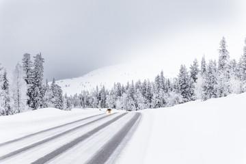 la route du froid
