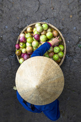 Overhead view of woman selling fruits in market
