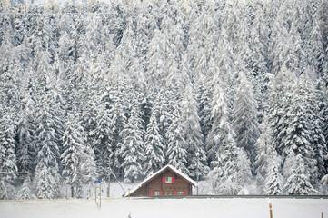 Lonely house in winter. Celerina, Engadine, Switzerland
