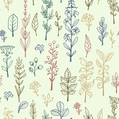 Seamless pattern with handdrawn vector doodle herbs and flowers