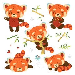 vector cartoon red panda set