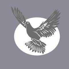 Dove of Peace .