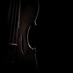 Foto op Canvas Muziek Violin close up Classical music instruments