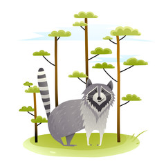 Raccoon in the wild nature with trees