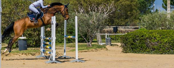 Papiers peints Equitation Equitation,saut d'obstacles,compétition.