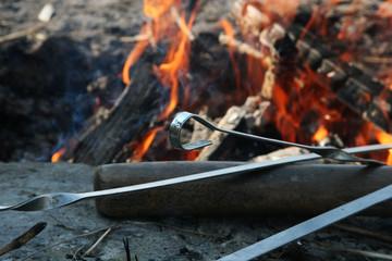 Bonfire with skewers in spring