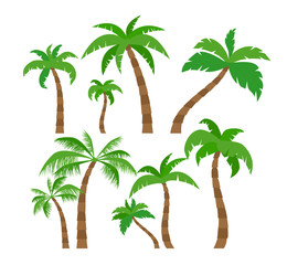 palm trees set in flat style  on white background